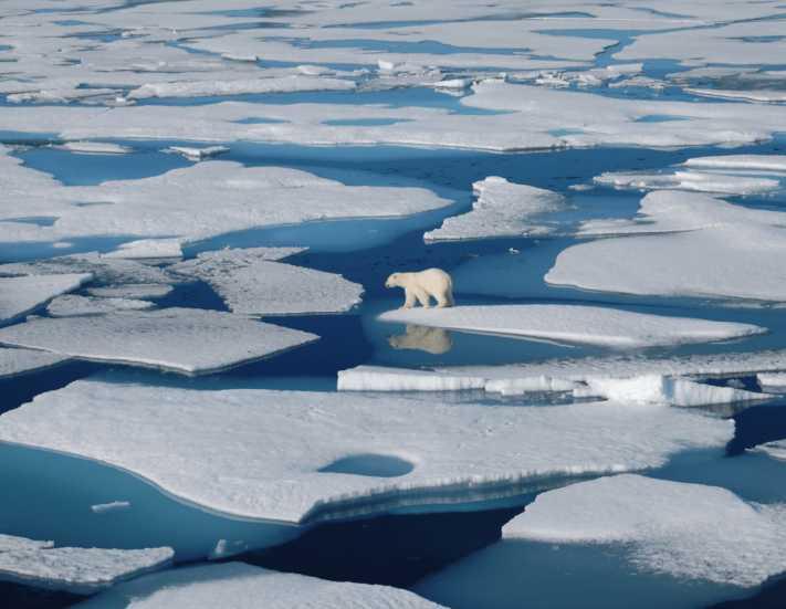 Turizm Kuzey Kutbu'nun felaketi mi oluyor?