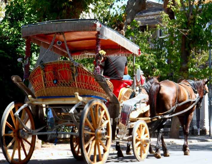 Adalarda turiste fayton taşımaya elektrikli araç