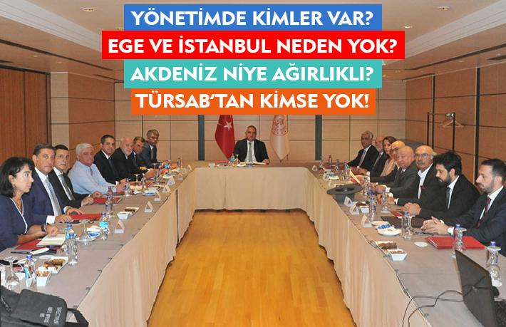 Turizm Tanıtma Ajansı'nda İstanbul ve Ege üvey evlat mı?