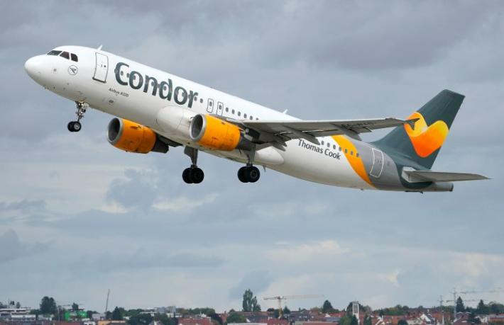 Otelcinin fendi, Condor'u yendi