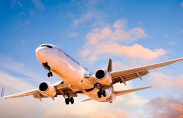Dev hava yolu şirketinin satışına onay çıktı
