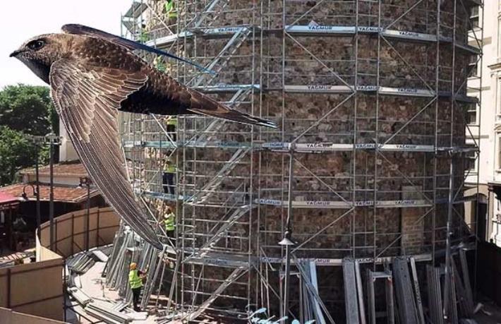 Galata Kulesi'nin restorasyonuna 'Ebabil' rötarı