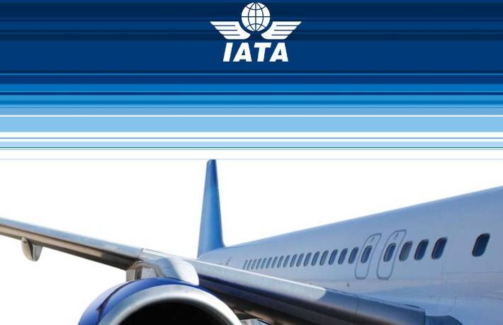 Havacılık sektörünün normale dönmesi 2024'ü bulacak