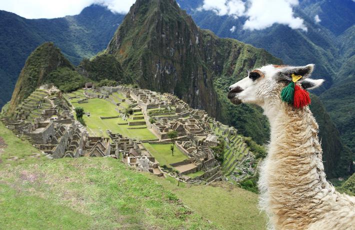 Gazella Turizm'den yeni seyahat konsepti
