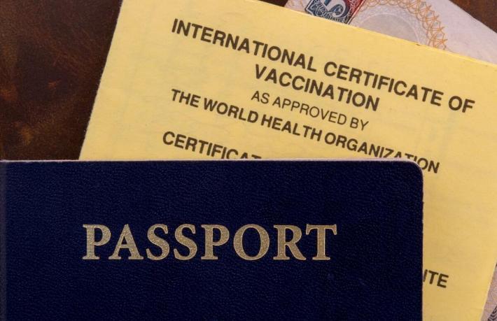 AB ülkelerine giriş için 'aşı pasaportu' şartı