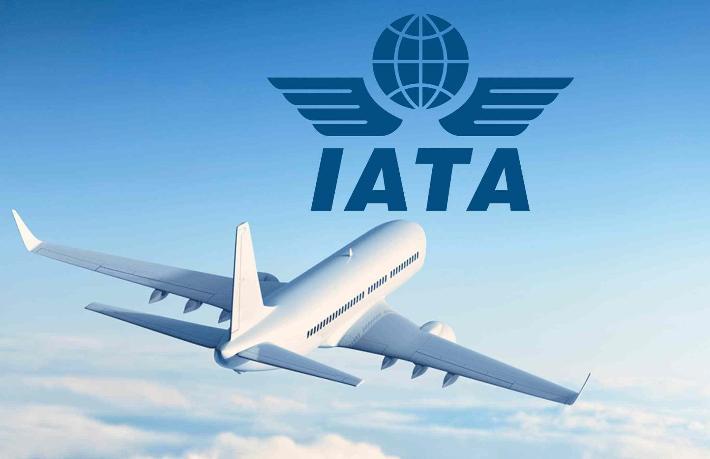IATA: Hükümetler havayolu şirketlerine destek olsun