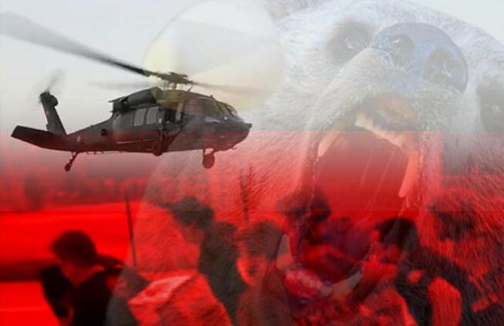 Bahtsız turiste Türkiye'de ayı saldırdı