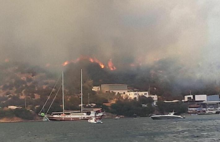 Bodrum'da yangın yerleşim yerlerine 5 metreye kadar yaklaştı... Belediye Başkanı'ndan hayati çağrı